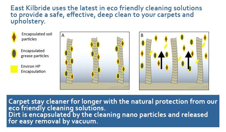Diagram showing how our encapsualtion carpet cleaning solution protects your carpet